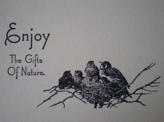 Enjoy nature...