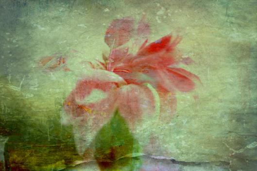 img_3930-dark-pink