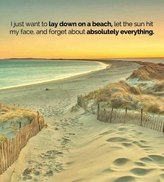 Image result for I Just want to lay down on the beach let the sun hit my face and forget